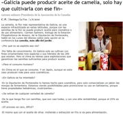 """Galicia can produce camellia oil, we only have to grow the genus with this specific aim"""